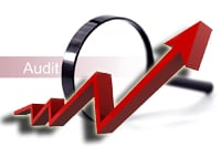 small business tax audit increase